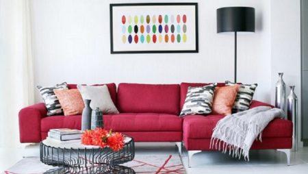 Ce trebuie sa stii atunci cand cumperi o canapea?