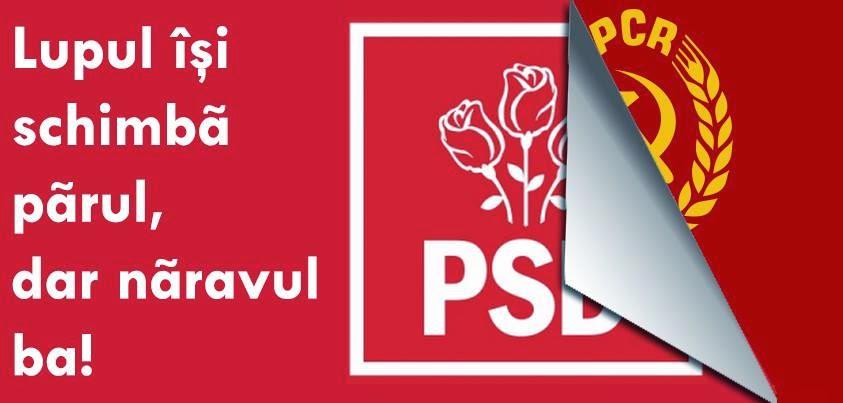 Ce noroc ca avem primar PSD-ist la Campia-Turzii